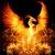 PhoenixWrites
