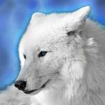 SkyWolf25's avatar