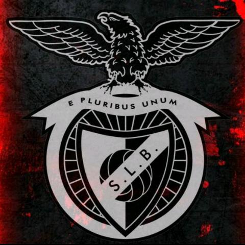 Rafafox's avatar