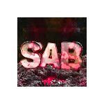 SABchan's avatar