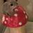 Øisin's avatar