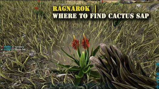 Ark Ragnarok : Where to find Cactus Sap !