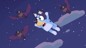 Bluey and fruitbats