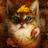 Лунноличка's avatar