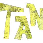 Tanhamman