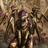 Avatar de Pequeño devorador