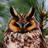OwlHogwarts's avatar