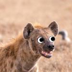 Ac9jg's avatar