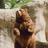 Kickratgames's avatar