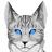 Алоцветик КВ's avatar