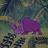 Shut down guilty rhinoceros guy's avatar