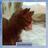 Камнесказ's avatar