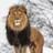 Vipori13's avatar