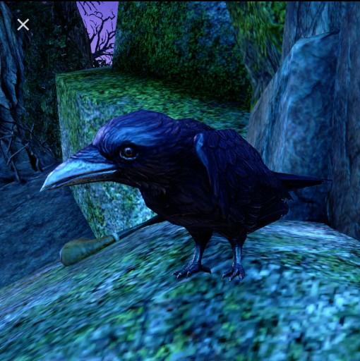 Malikonj02's avatar