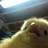 Kraydus's avatar