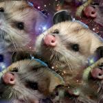 Рюрик2.0's avatar