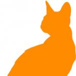 Orangecat15