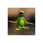 Your Friendly Neighborhood Kermit's avatar