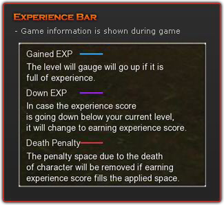 DetailExperience Bar.png