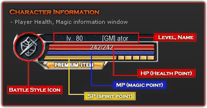 Detail Character Information.png