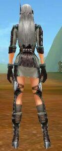 Back Bluestin Battleset f.jpg