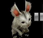 Rabbithorn1 t.jpg