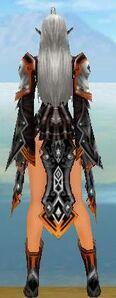 Back ShadowTitanium Martialsuit f.jpg