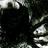 D. Compton Ambrose's avatar