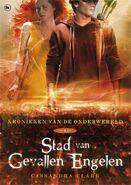 COFA cover, Dutch 01