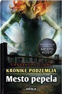 COA cover, Slovenian 01