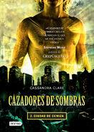 COA cover, Mexican 01