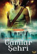 COG cover, Turkish 01