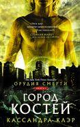 COB cover, Russian 04