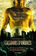 COA cover, Valencian 01