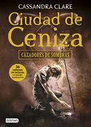 COA cover, Spanish 02