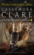 COHF cover, Slovak 02