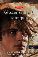 TSA10 cover, Hungarian 01