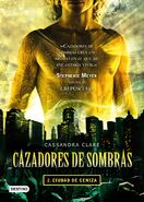 COA cover, Spanish 01