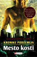 COB cover, Slovenian 01