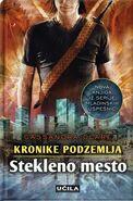 COG cover, Slovenian 01