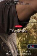 TSA08 cover, Hungarian 01