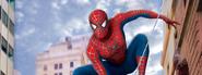 Background-blog-Spider-man