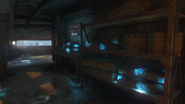 Shelves of Divinium in Orgins BO3