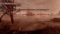 Tactical Nuke aftermath MW2