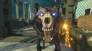 LightningHound Closeup BO4