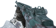 M14 Warsaw BO