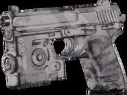 USP .45 Winter Tiger MWR