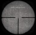 Gewehr 43 Sniper Sights CoD2