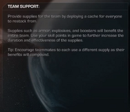 Team Support Description