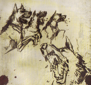 Dogs in soaps journal